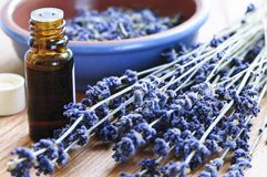 http://www.dreamstime.com/royalty-free-stock-images-lavender-herb-essential-oil-image5932669